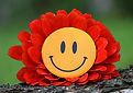 smile-1539196_1920.jpg