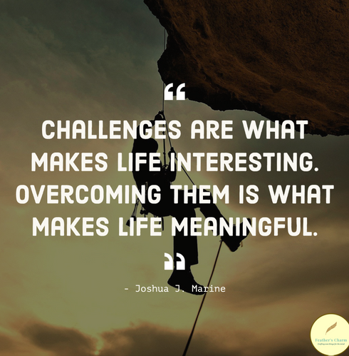 Challenges Are What Makes Life Interesting