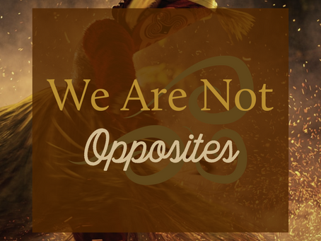 We Are Not Opposites