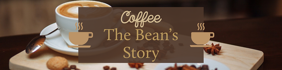 Coffee - The Bean's Story Feature.png