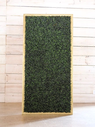 BoxWood%20wall%20MILIEU%20DECOR_edited.j