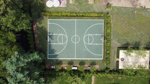 Full Court Basketball, Nova Green