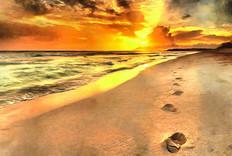 sunset_walk.jpg