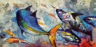 Feeding Tuna.jpg