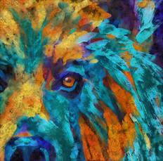Bear_in_living_color.jpg