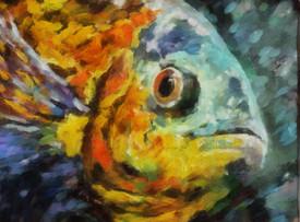 smilingfish.jpg