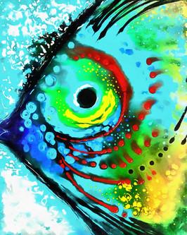Colorful_Fish.jpg