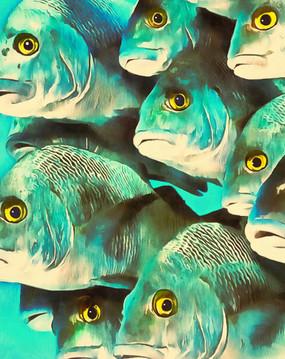 Eyes_on_you.jpg