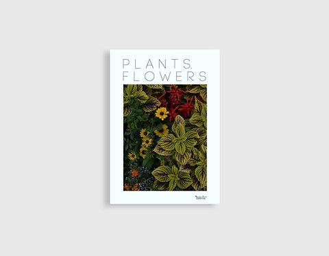 PLANTS. FLOWERS