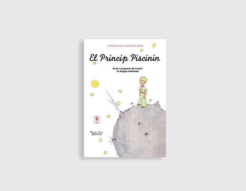 EL PRINCIP PISCININ