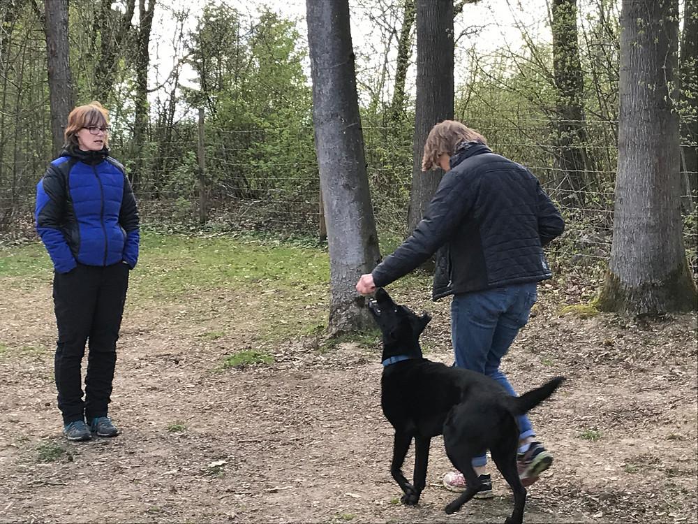 Hundeschule Schnauze Voll, Tierheilpraxis Lerner - Tiernaturheilkunde & Tierphysiotherapie