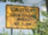 Loon Sign_edited.jpg