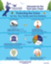 2020 Infographic.jpg