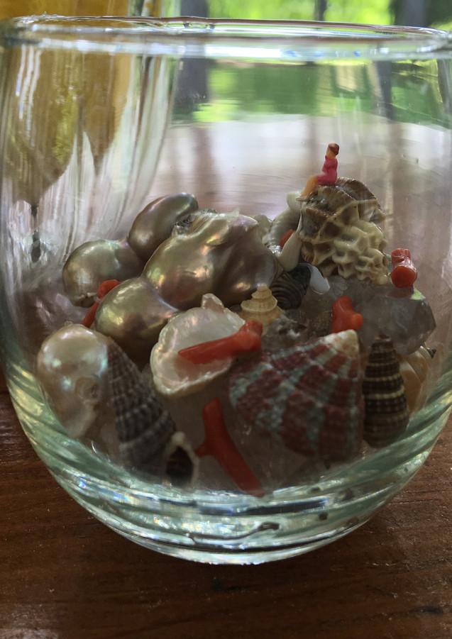 Glass Seashell World