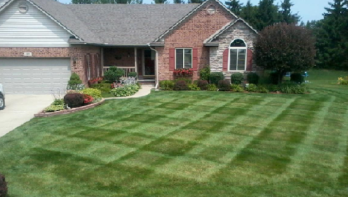 Pic_Diamond_Lawn3_1