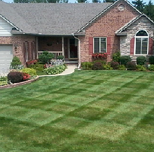 Diamonds Mowed into Lawn