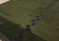 Runda stegstenar. Skiffer för trädgård