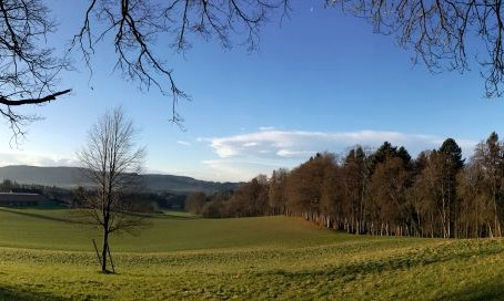 Am Bodensee im Januar.