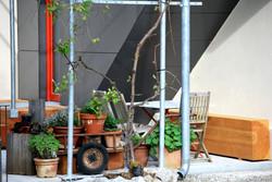 Mobiler Kräutergarten für die Gäste