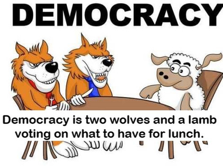 What Does Democracy Look Like?