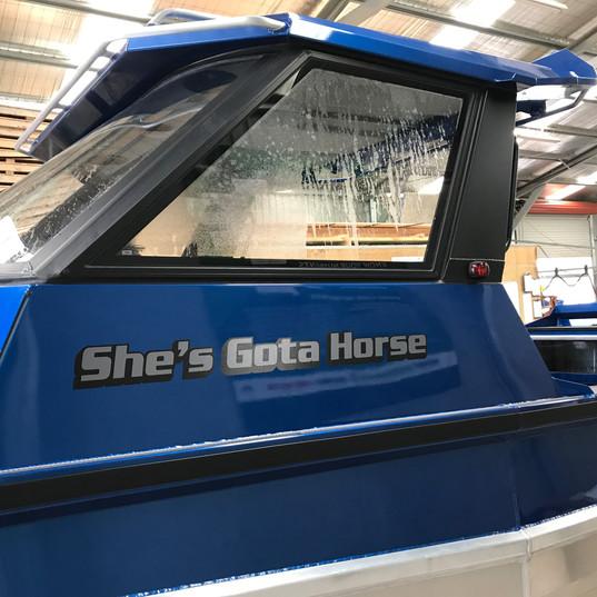 She's Gota Horse Boat Name.JPG