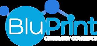 BluPrint Logo Vector_KO-oncology.png