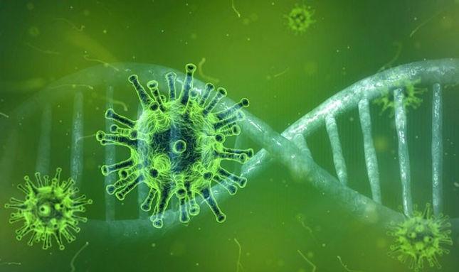coronavirus-origen-evolucion-por-que-no-