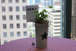 Eco-friendly Centerpiece
