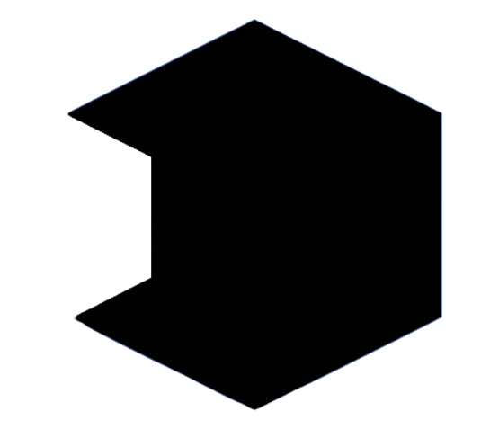 hexagon%20cut%20out_edited.png