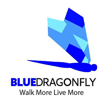 blue dragonfly with walk more live more screenshot.JPG