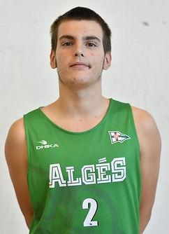 Ricardo Manuel Sequeira Henriques