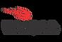 logo-dhika.png
