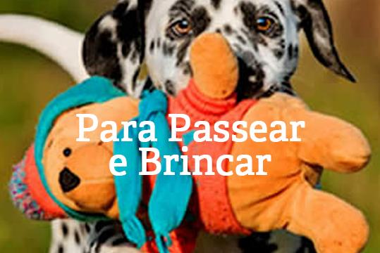 para_passear_e_brincar