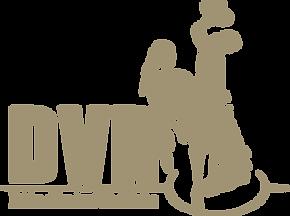 DVR Logo.png