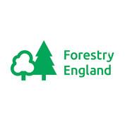 forestry-england.jpg