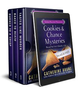 CookiesBox1_B.jpg
