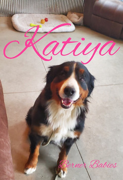 Katiya