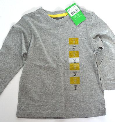 Toddler Long Sleeve Grey Shirt