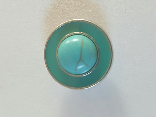 Turquoise Snap