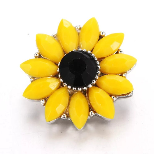 Sunflower Snap