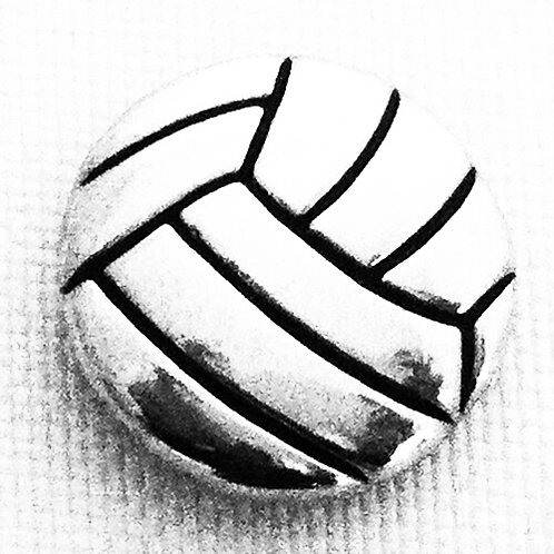 Volleyball Snap