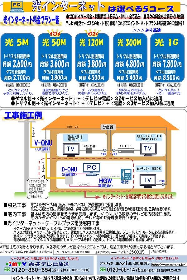 hikari-022.jpg