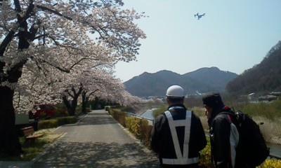 上丸子の桜堤防のドローン撮影
