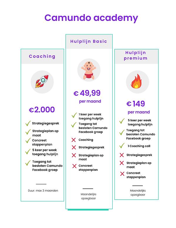 Kopie van Pricing and Services Guide _ B