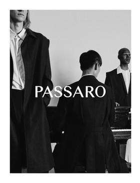 Steven Passaro - Launch