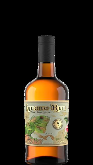 Aceo_Spirits-Iguana_01.png
