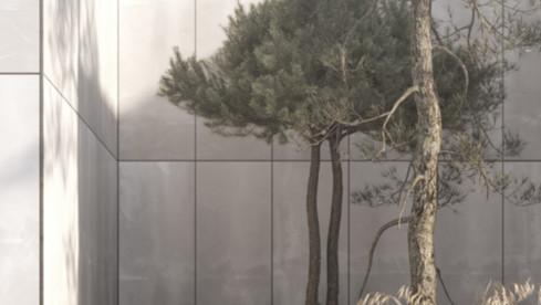 concrete garden_pine trees.jpg