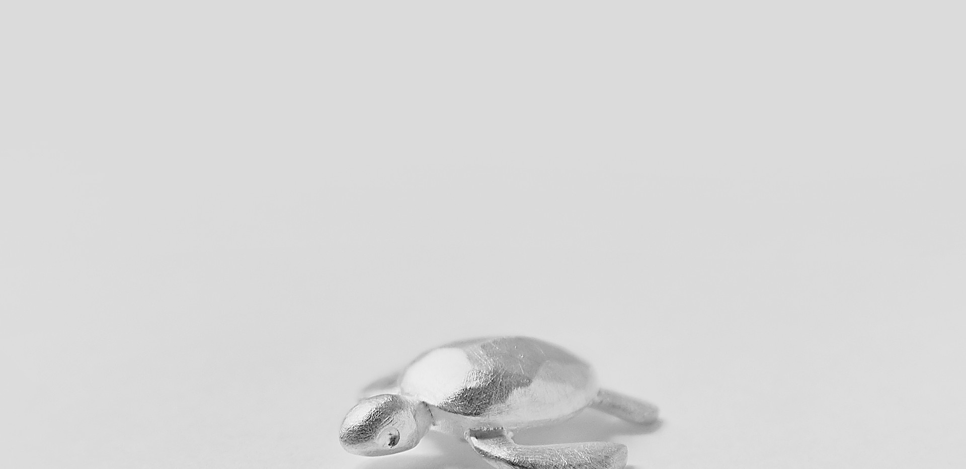 Die Meeresschildkröte der Finsternis