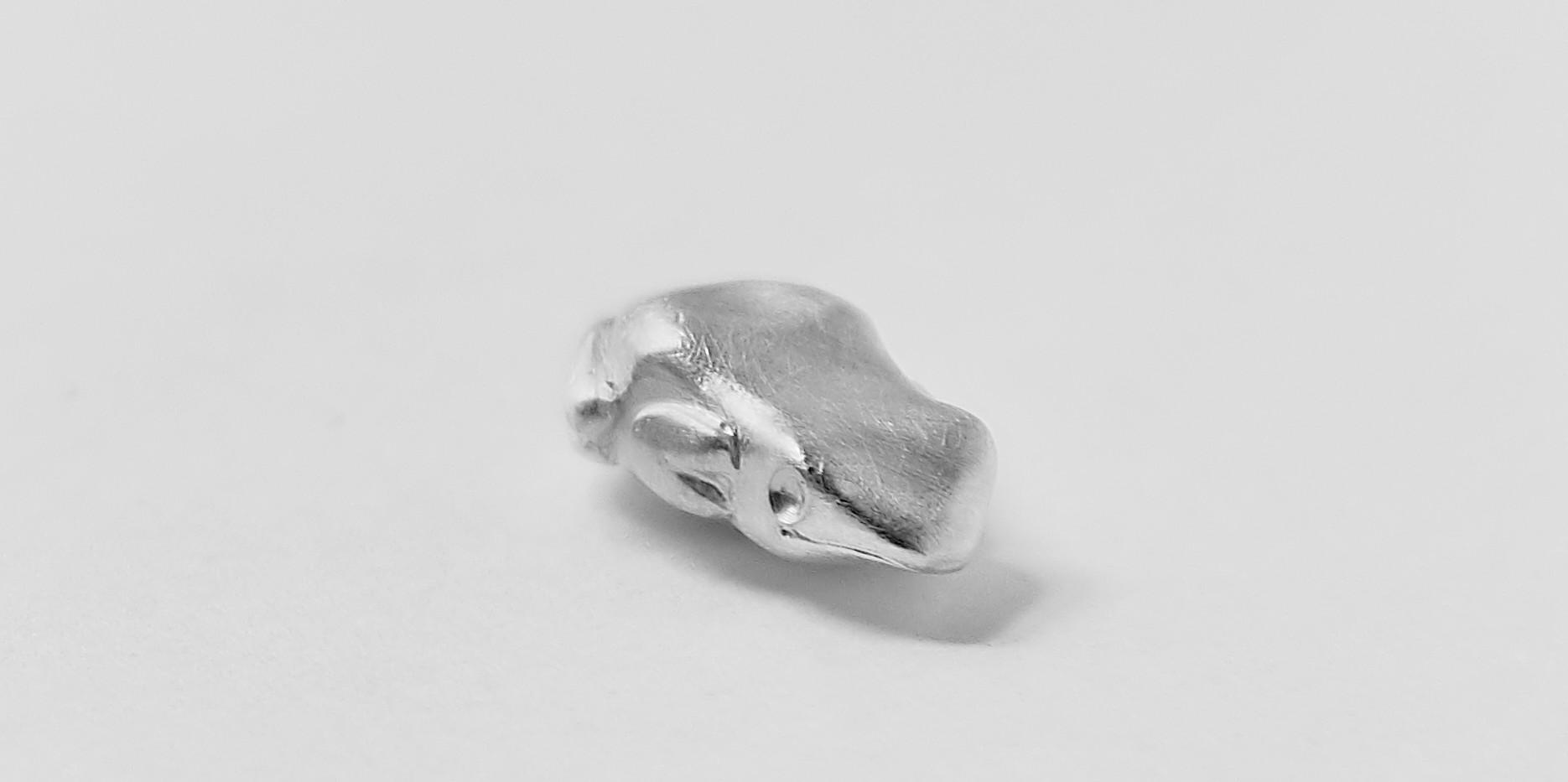 Der Pfeilgiftfrosch terribilis