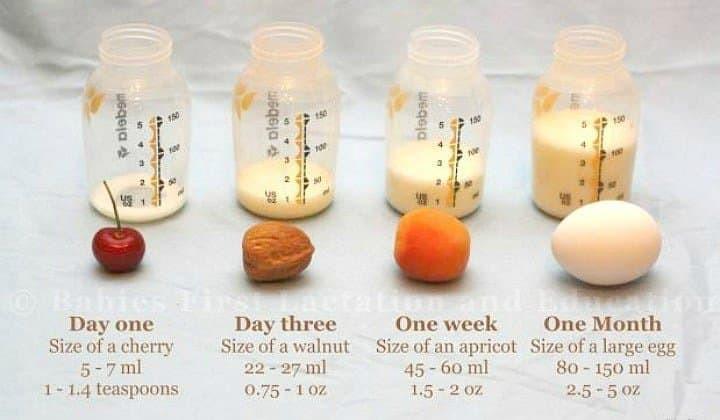 Newborn stomach. How much should a newborn eat. Breastfeeding newborn. Colostrum. Breastmilk